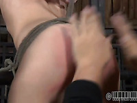 Sweet darling gets her smooth arse whipped brutally