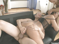 Rocco's Double Anal Festival